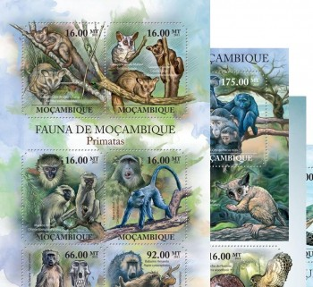 30-08-2011-fauna-of-mozambique-code-moz11401a-moz11430b.jpg