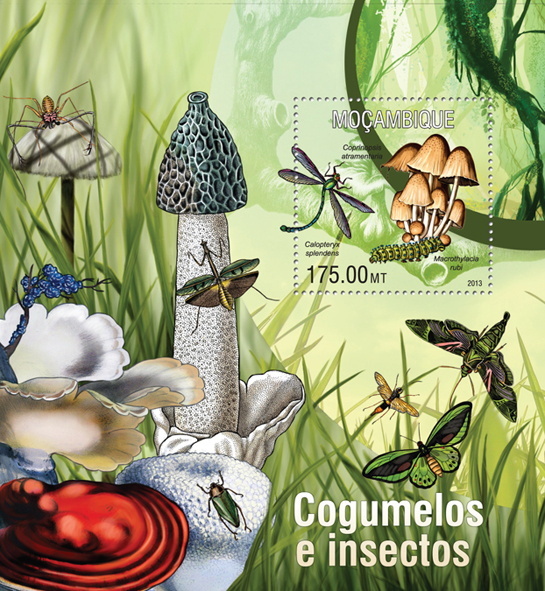 Mushrooms and Insects - Issue of Mozambique postage Stamps