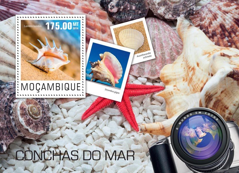 Seashells - Issue of Mozambique postage Stamps