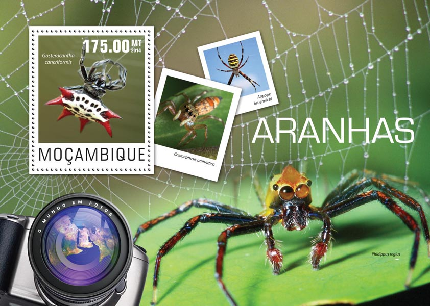 Spiders - Issue of Mozambique postage Stamps