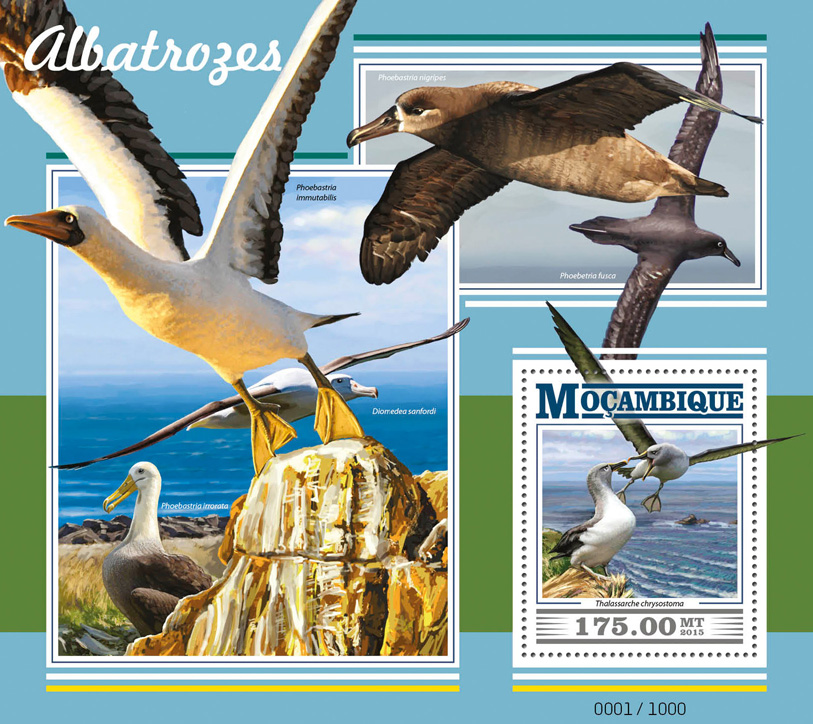 Albatrosses - Issue of Mozambique postage Stamps