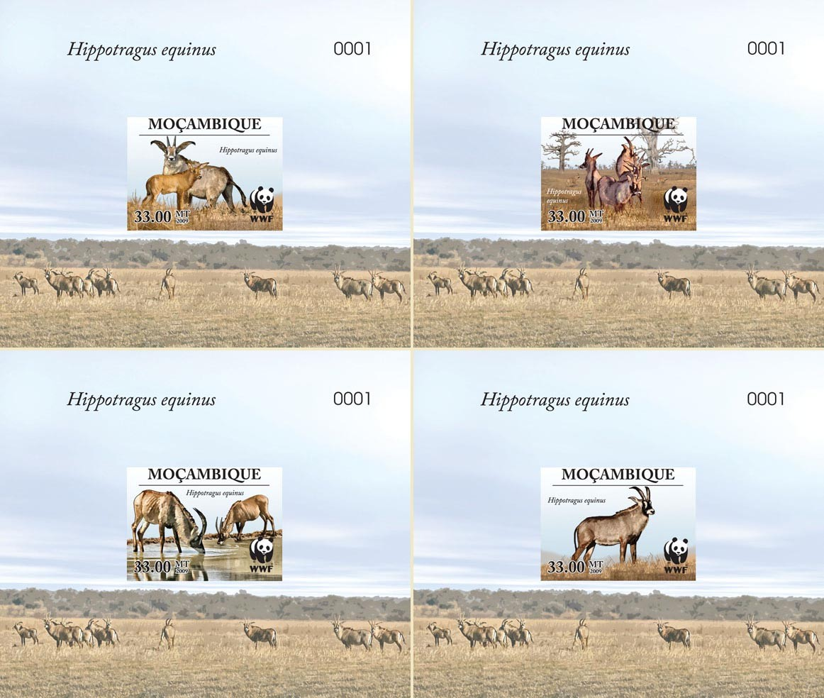 WWF Antelope Hippotragus equinus De Luxe sheet with single stamp 4 - Issue of Mozambique postage Stamps