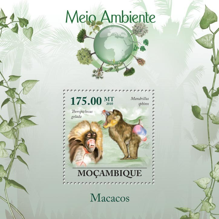 Macaques ( Theropithecus gelada ) - Issue of Mozambique postage Stamps