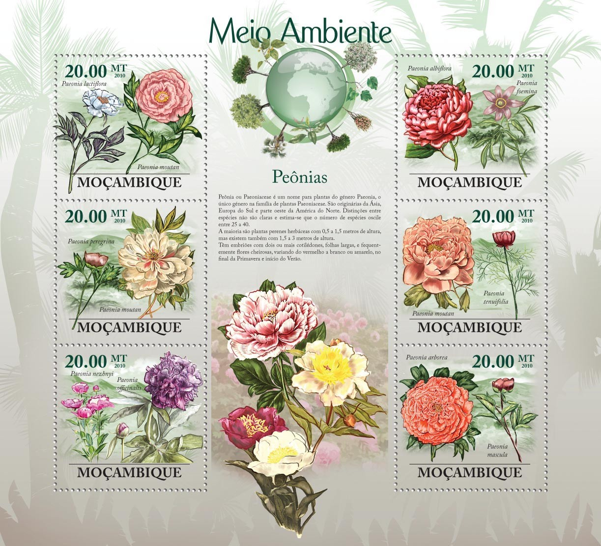 Peony Flower, ( Flower of China ),( Peonia lactiflora, peregrina, officialis, foemija, mountan, mascula, etc..) - Issue of Mozambique postage Stamps