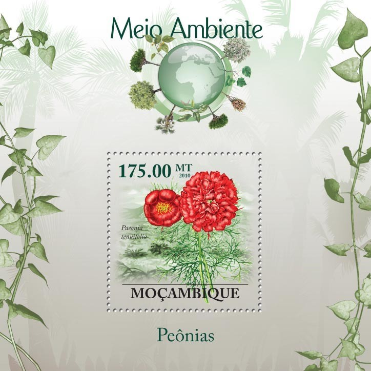 Peony Flower, ( Flower of China ), ( Peonia tenuifolia ) - Issue of Mozambique postage Stamps