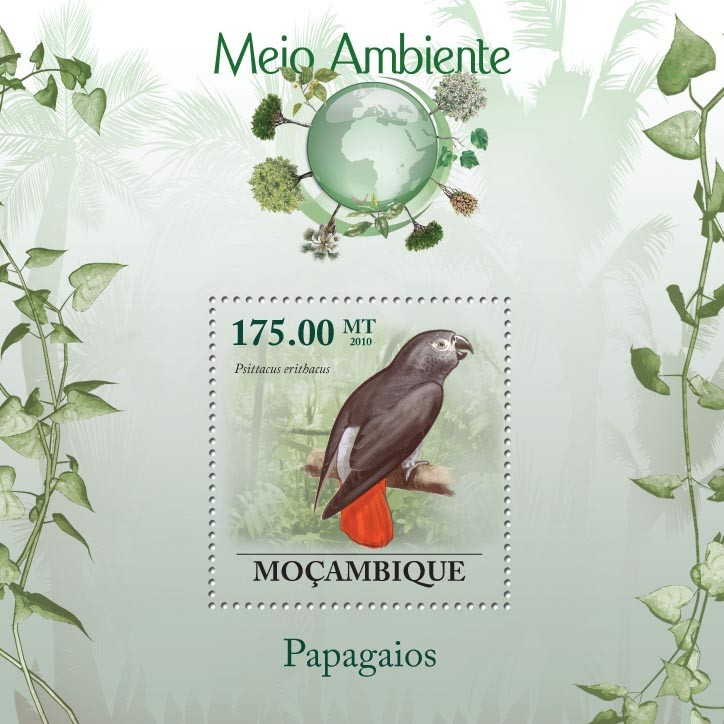 Parrots, ( Psittacus erithacus ) - Issue of Mozambique postage Stamps