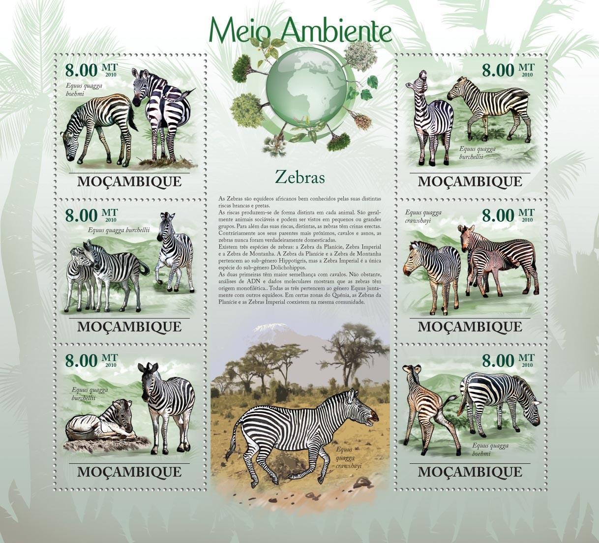 Zebras, ( Eguus quagga boehmi, Eguus quagga burchelli ) - Issue of Mozambique postage Stamps