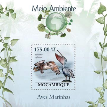 Sea Birds (Pelecanus rufescens). - Issue of Mozambique postage Stamps