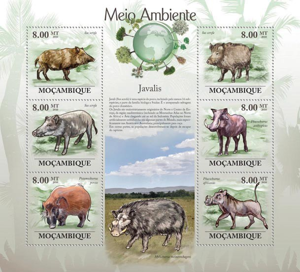 Boars (Sus scrofa ?タᆭ Phacochoerus africanus) - Issue of Mozambique postage Stamps