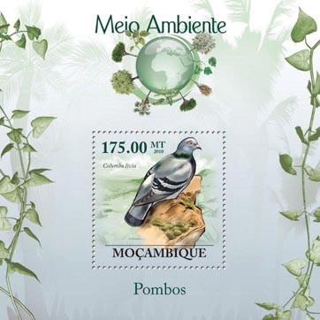 Pigeons (Columba livia) - Issue of Mozambique postage Stamps