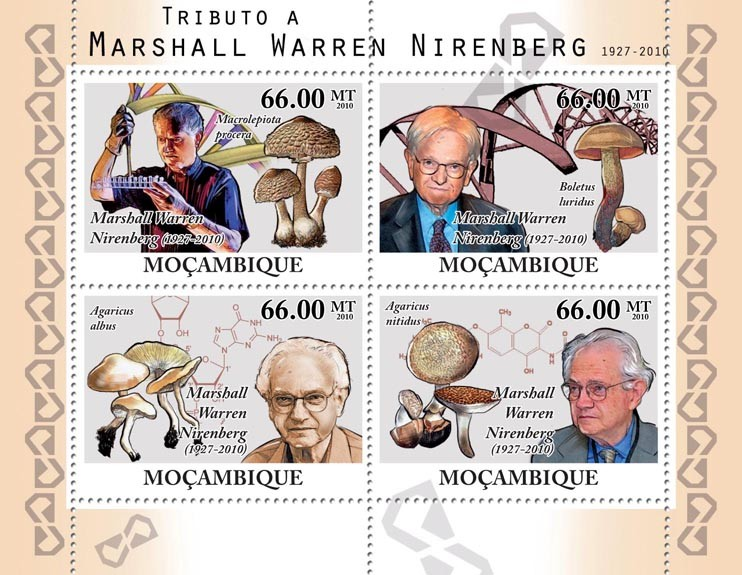 Tribute to Marshall Warren Nirenberg, (1927-2010), Nobel Prize & Mushrooms. - Issue of Mozambique postage Stamps