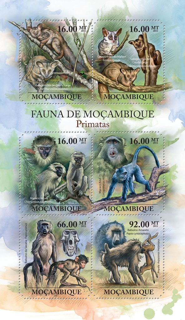 Primates,  (Otolemur crassicaudatus, Papio cynocephalus). - Issue of Mozambique postage Stamps