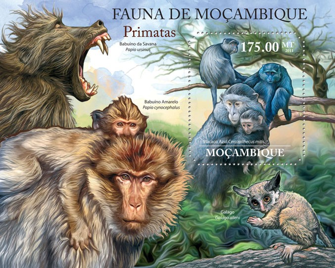 Primates, (Cercopithecus mitis). - Issue of Mozambique postage Stamps