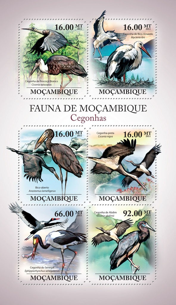 Storks, (Ciconia episcopus, Coconia abdimii). - Issue of Mozambique postage Stamps