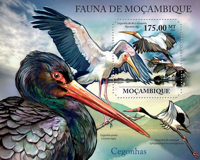 Storks, (Mycteria ibis). - Issue of Mozambique postage Stamps