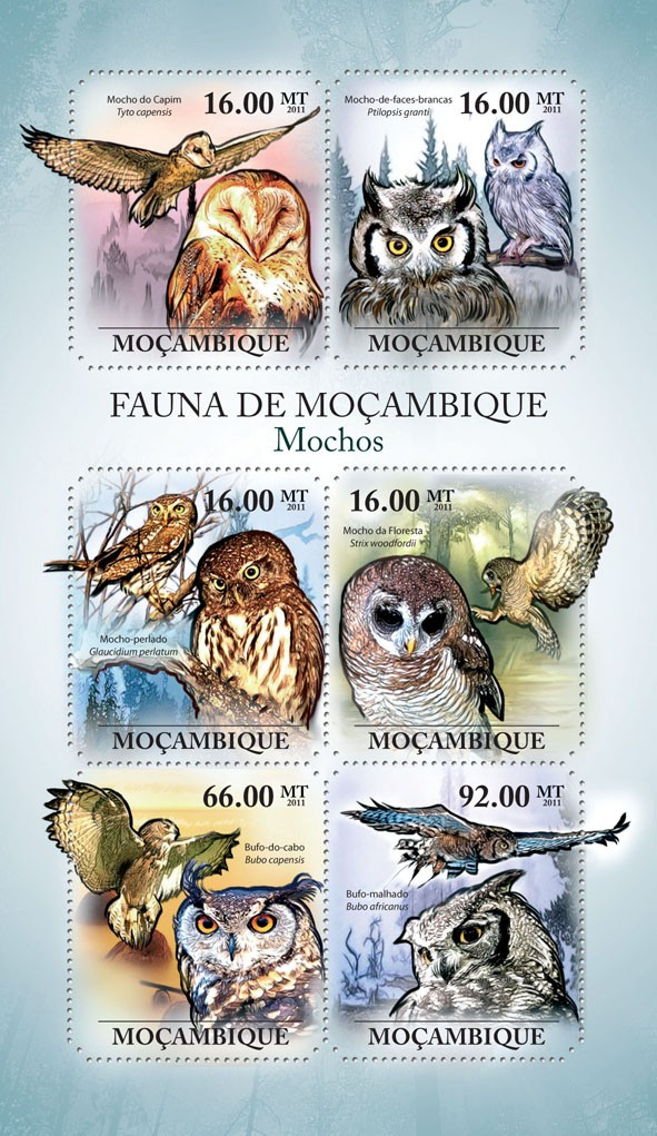 Owls, (Tyto capensis, Bubo africanus). - Issue of Mozambique postage Stamps