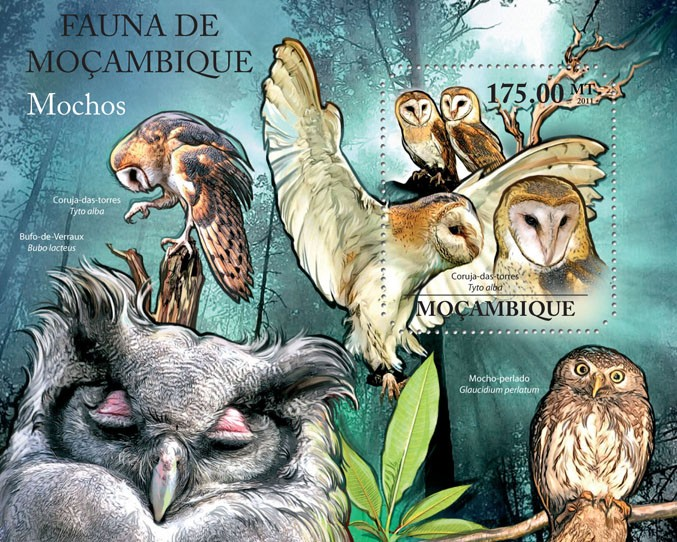 Owls, (Tyto alba). - Issue of Mozambique postage Stamps