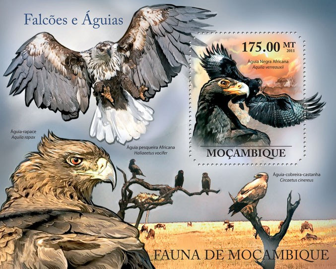 Hawks & Eagles, (Aquila verreauxii). - Issue of Mozambique postage Stamps