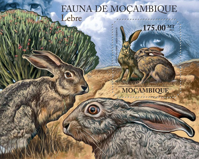 Hares, (Lepus capencis). - Issue of Mozambique postage Stamps