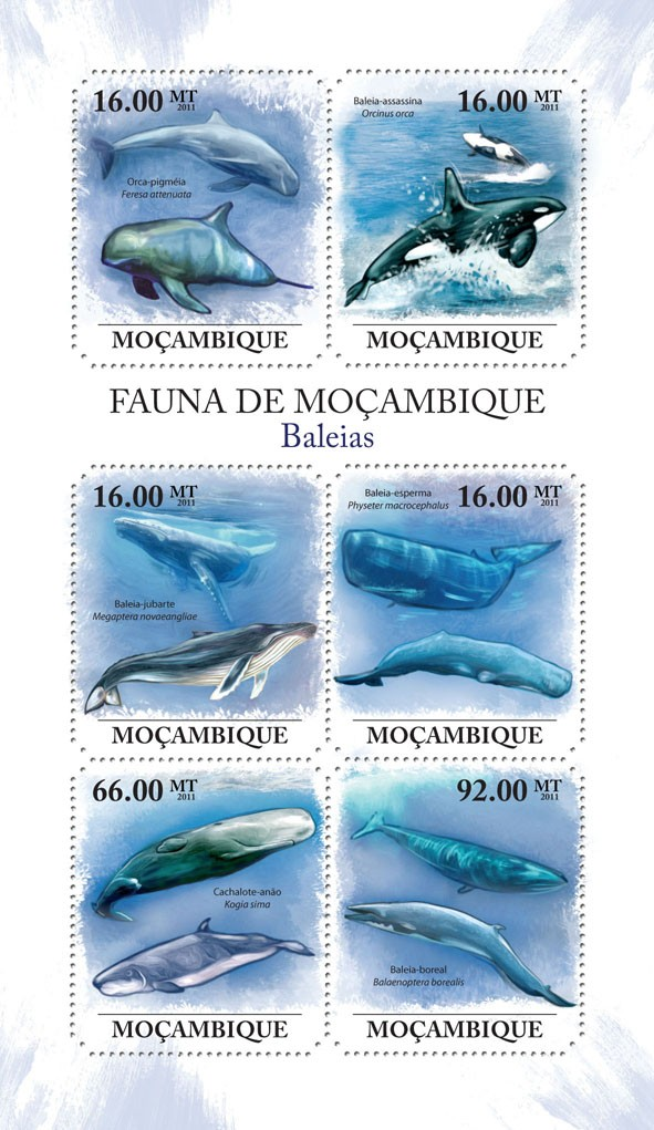 Whales, (Feresa attenuata, Balaeoptera borealis). - Issue of Mozambique postage Stamps