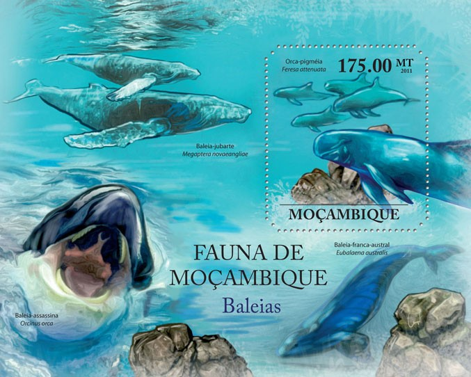 Whales, (Feresa attenuata). - Issue of Mozambique postage Stamps