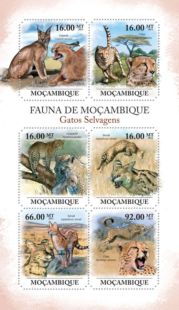 Wild Cats, (Caracal caracal, Acynonix jubatus). - Issue of Mozambique postage Stamps