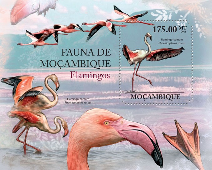 Flamingos, (Phoenicopterus roseus). - Issue of Mozambique postage Stamps