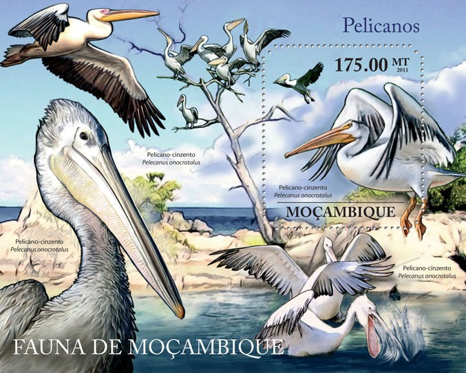 Pelicans, (Pelecanus onocrotalus). - Issue of Mozambique postage Stamps
