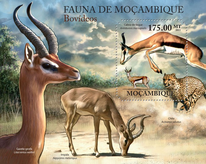 Antelopes, (Cabra-de-legue). - Issue of Mozambique postage Stamps