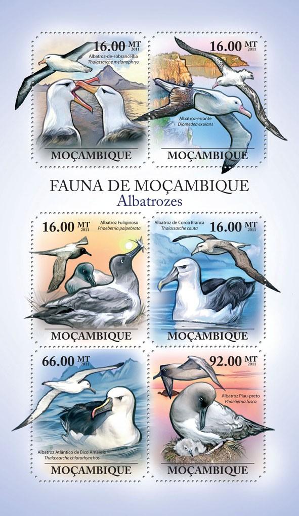 Albatrosses, (Albatroz-de-sobrancelha, Piau-petro). - Issue of Mozambique postage Stamps