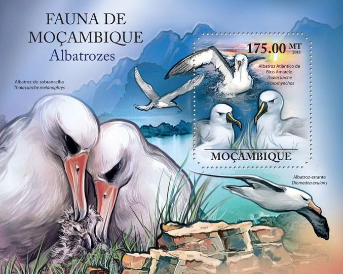 Albatrosses, (Albatroz Atlantico de Bico de Bico Amarelo). - Issue of Mozambique postage Stamps
