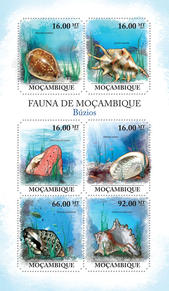 Shells, (Mauritia Arabica, Chicoreus ramosus). - Issue of Mozambique postage Stamps