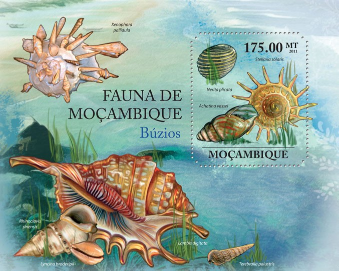 Shells, (Nerita plicata). - Issue of Mozambique postage Stamps