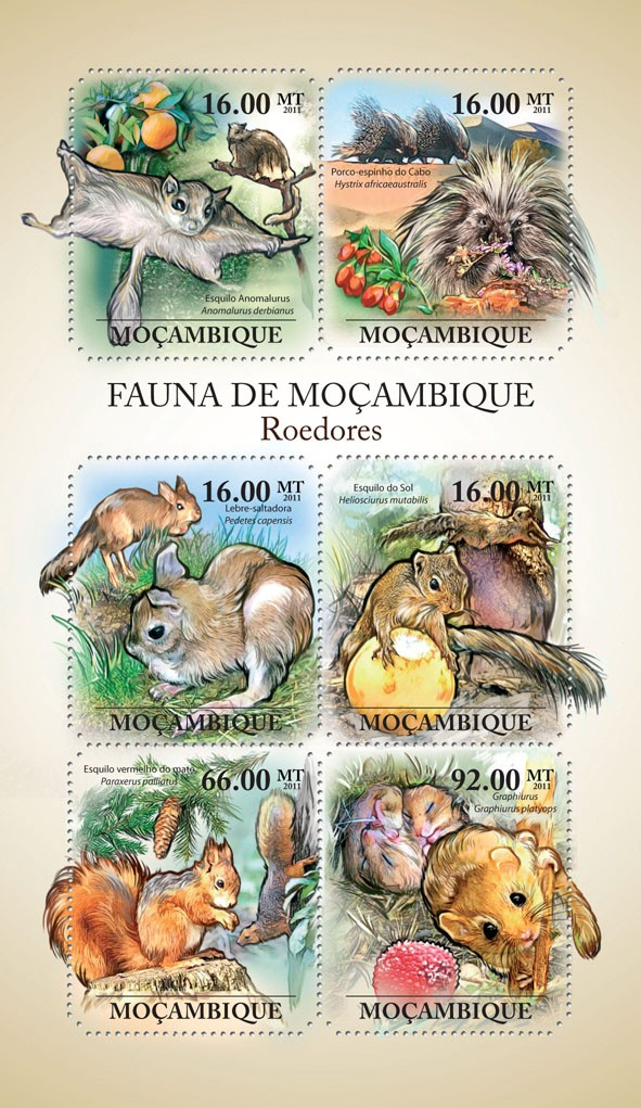Rodents, (Esquilo Anomalurus, Graphiurus). - Issue of Mozambique postage Stamps