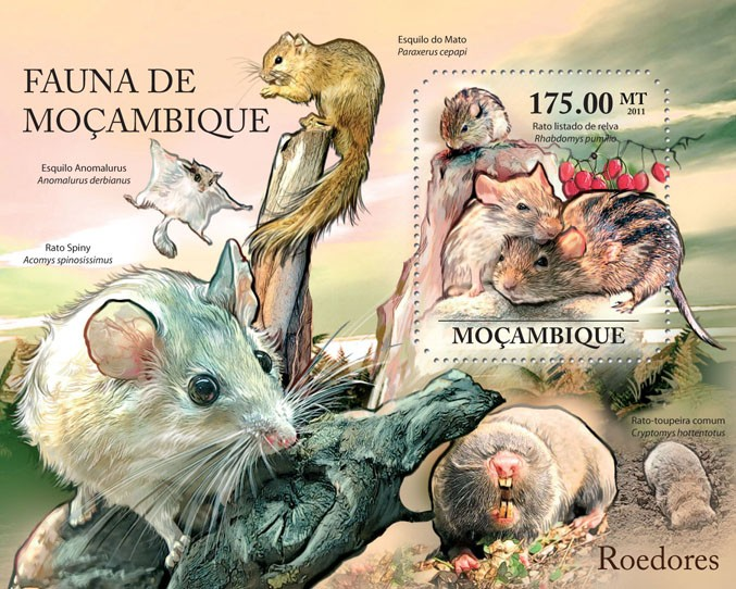 Rodents, (Rato listado de relva). - Issue of Mozambique postage Stamps