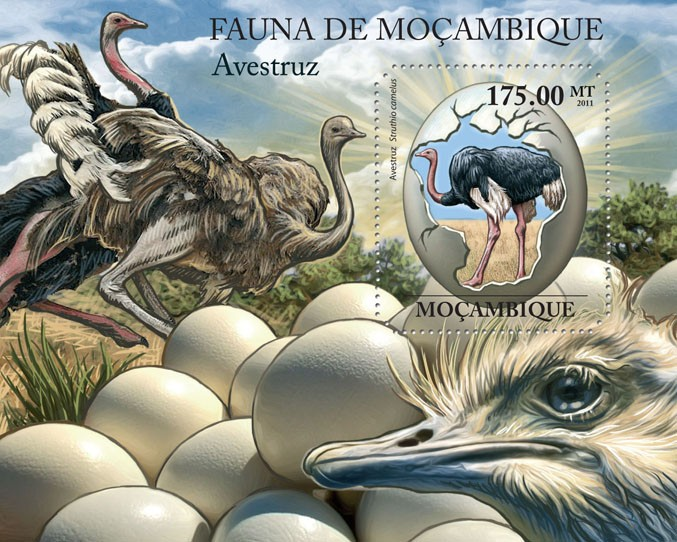 Ostrich, (Struthio camelus). - Issue of Mozambique postage Stamps