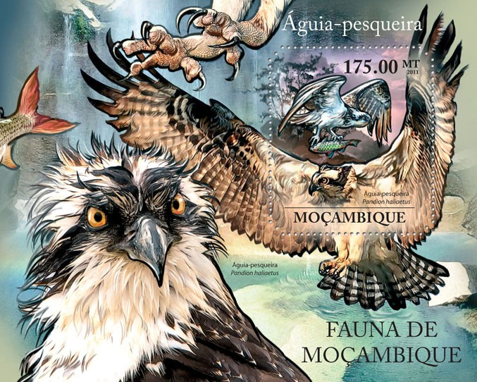 Ospreys, (Aguia-pesqueira). - Issue of Mozambique postage Stamps
