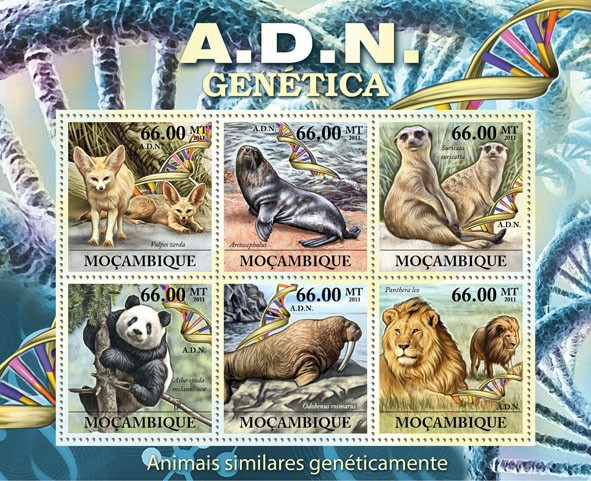 A.D.N. Genetics, Genetically Similar Animals, (Vulpes zendra, Panthera Leo). - Issue of Mozambique postage Stamps