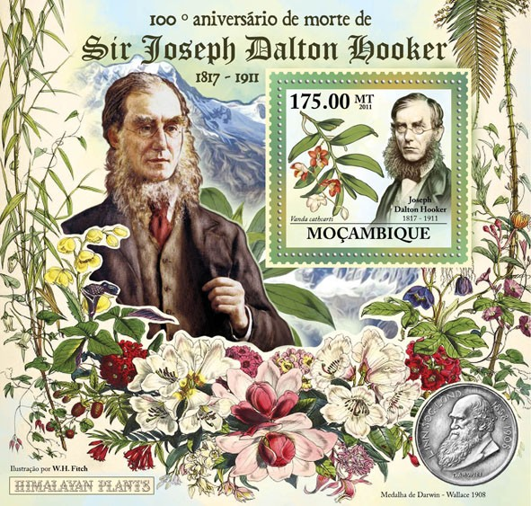 100th Anniversary of Death of Sir Joseph Dalton Hooker, 1817-1911, (Vanda cathcarti). - Issue of Mozambique postage Stamps
