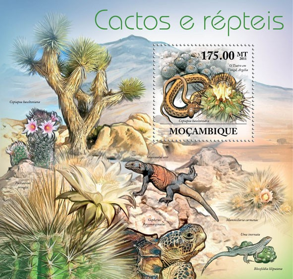 Cactuses & Reptils, (Copiapoa haseltoniana). - Issue of Mozambique postage Stamps
