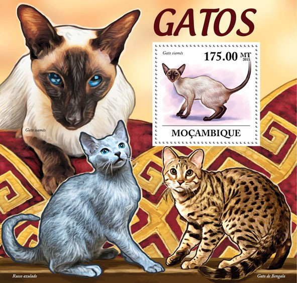 Cats, (Gato siames). - Issue of Mozambique postage Stamps