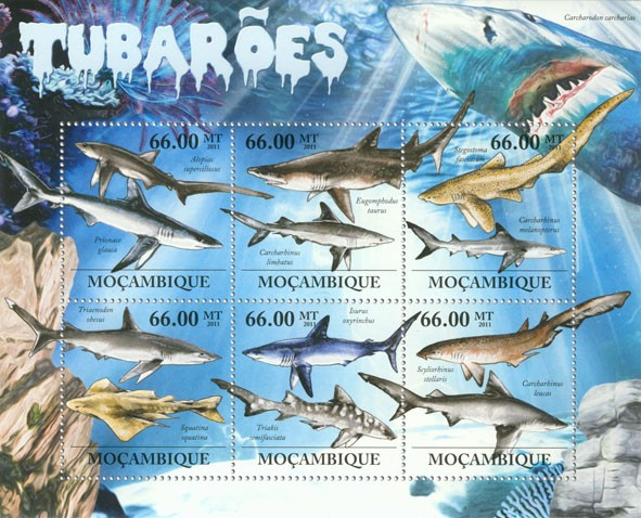 Sharks, (Alopias superciliosus, Scyliorbinus stellaris) . - Issue of Mozambique postage Stamps