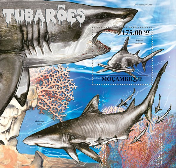 Sharks, (Sphyrna mokarran) . - Issue of Mozambique postage Stamps