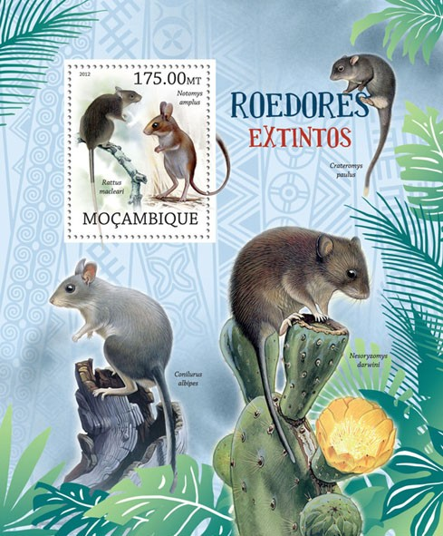 Rodents, (Notomys amplus). - Issue of Mozambique postage Stamps