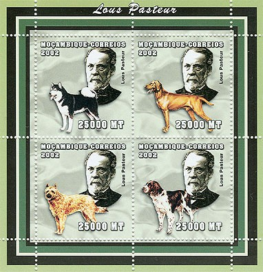 Dogs (Louis Posteur)  4 x 25000  MT - Issue of Mozambique postage Stamps