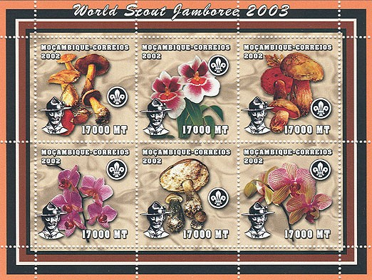 World Scout Jamboree 2003-Baden Powell Mushroom/Orchid   6 x 17000  MT - Issue of Mozambique postage Stamps