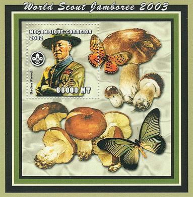 World Scout Jamboree 2003-Baden Powell   Mushroom/Butterflies   88000  MT S/S - Issue of Mozambique postage Stamps