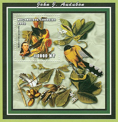 Birds (J.J.Audubon) 110000 MT S/S - Issue of Mozambique postage Stamps