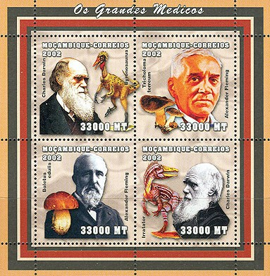 The scientifics - Doctors (C.Darwin, A.Fleming, -Dinos-Mushrooms)    4 x 33000  MT - Issue of Mozambique postage Stamps