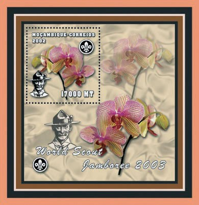 Scouts - Orchids 17000  MT - Issue of Mozambique postage Stamps